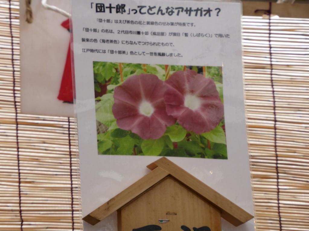 f:id:Nagoya1976:20160710204539j:plain