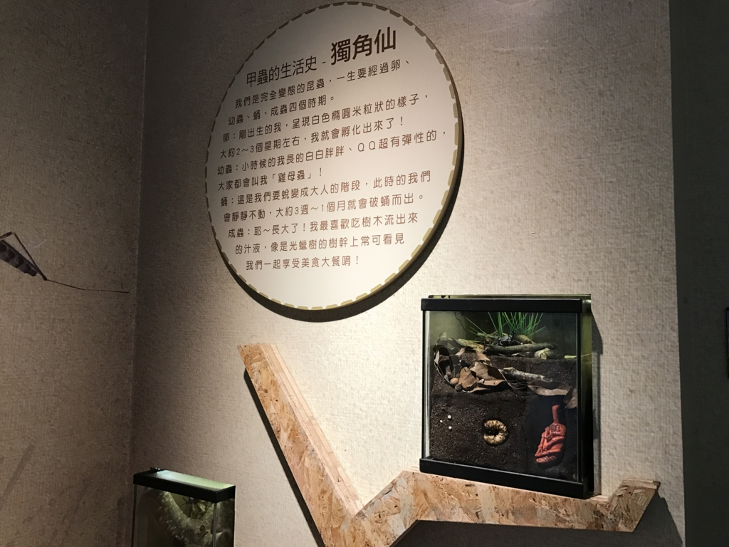 f:id:Nagoya1976:20170526083507j:plain
