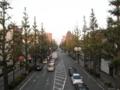 2011/11/04/イチョウ並木