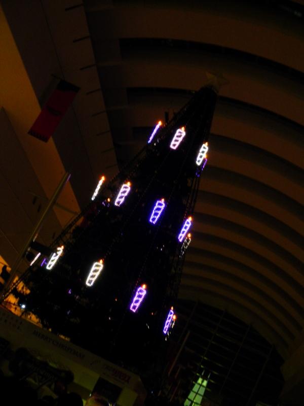 2011/12/18/クリスマスツリー6