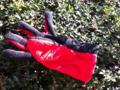 2011/12/26/手袋