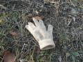 2011/12/31/手袋