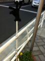 2012/01/06/手袋1
