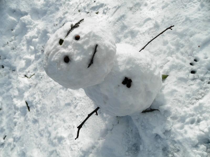 2012/01/24/雪だるま3