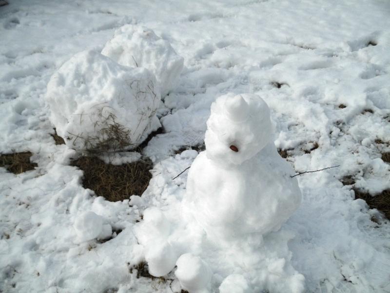 2012/01/24/雪だるま4