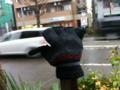 2012/02/14/手袋