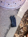 2012/02/16/手袋