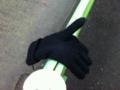 2012/03/01/手袋