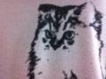 猫プリントの服