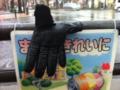 2012/03/31/手袋2