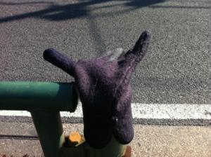 2012/04/05/手袋1