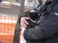 2012/04/08/ウサギ