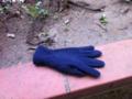 2012/04/13/手袋2