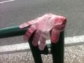 2012/10/12/手袋