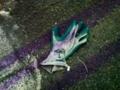 2012/10/15/手袋