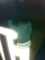 2012/12/08/手袋