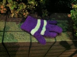 2013/01/09/手袋3