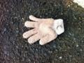 2013/01/21/手袋2