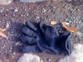 2013/02/07/手袋