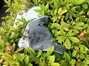 2013/05/15/手袋