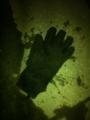 2014/03/06/手袋