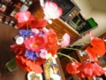 2014/05/24/ポピー&ヤグルマギク