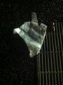 2014/11/27/手袋