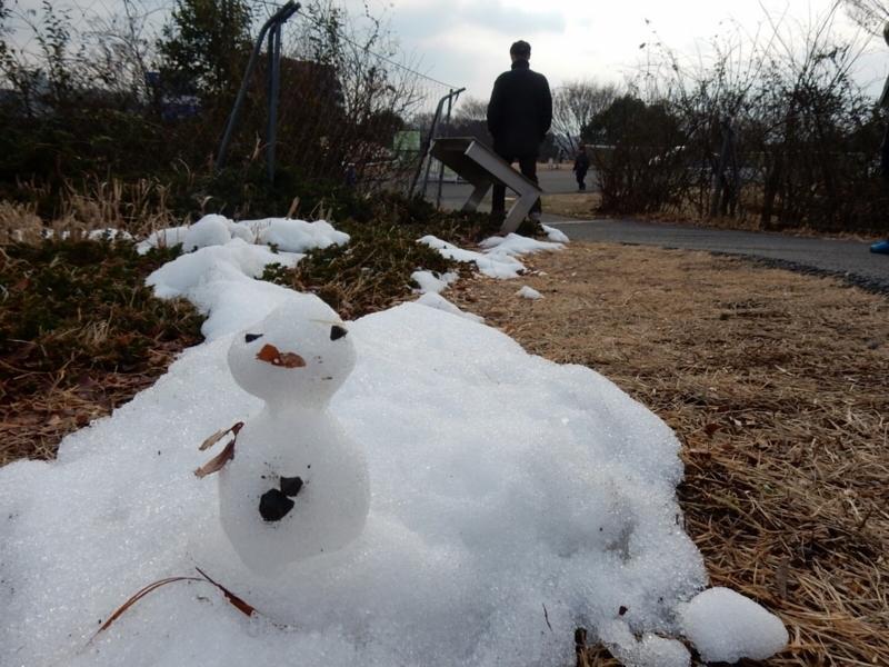 2018/02/03/雪だるま1
