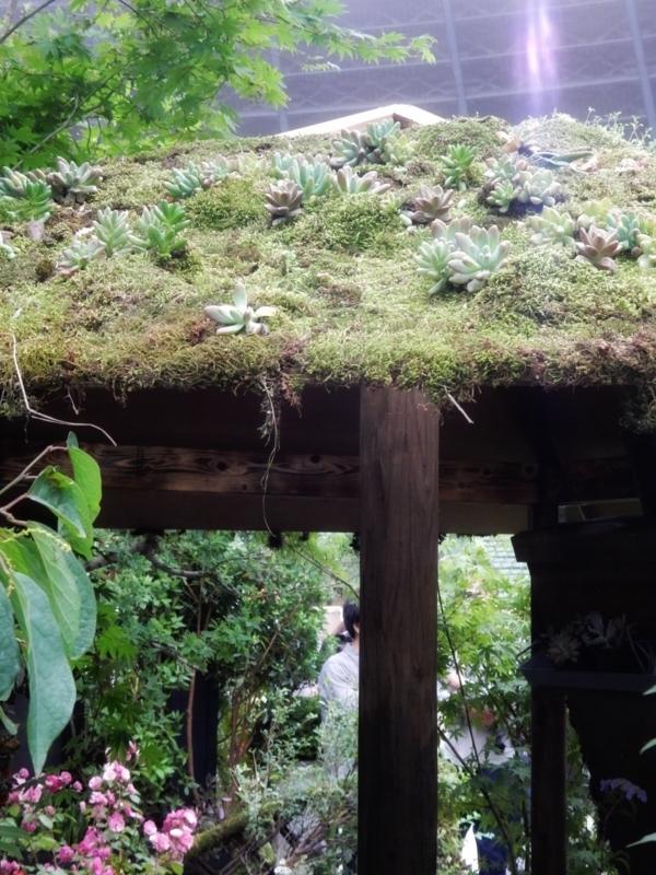 ガーデン部門9