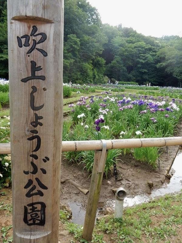 f:id:Nakano_Hitsuji:20180608155110j:plain