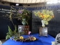 Japan Botanical Style -日本いけばな三大流派-・いけばな小原流
