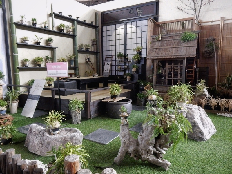 ディスプレイ部門・日本富貴蘭会