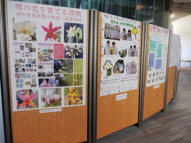 2019/03/08/小中高生のレポート