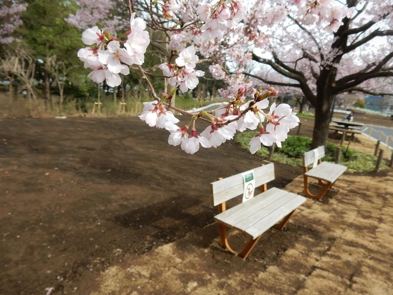 f:id:Nakano_Hitsuji:20190322151139j:plain