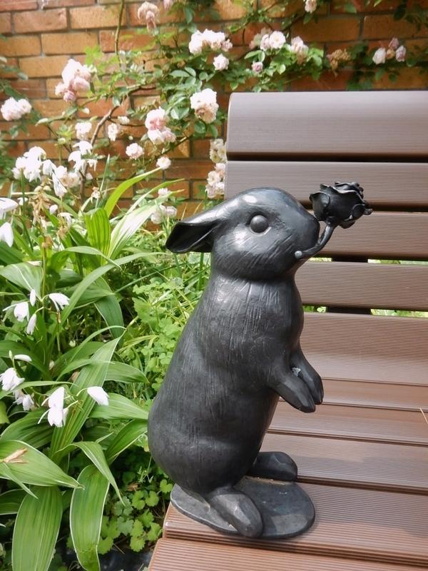 2019/05/18/ウサギ2