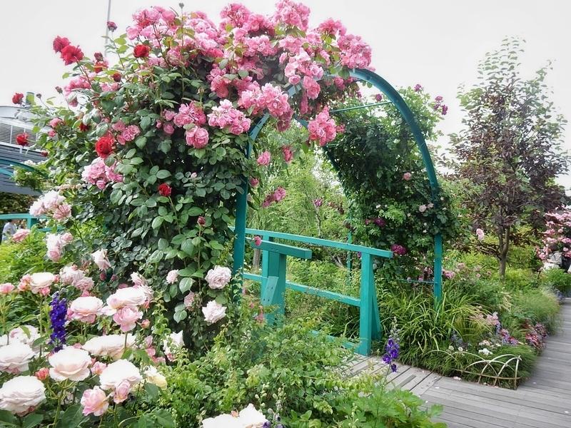 2019/05/20/睡蓮の庭4