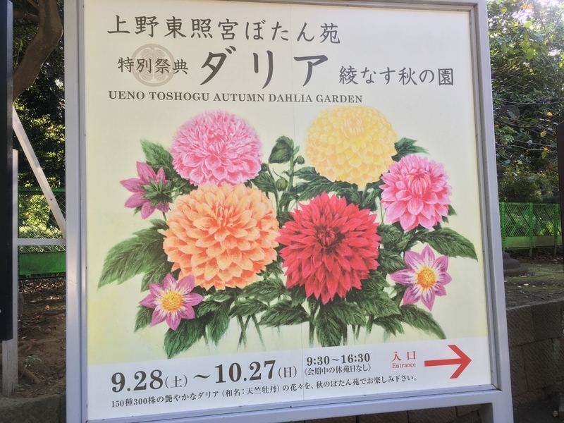 f:id:Nakano_Hitsuji:20191009143111j:plain