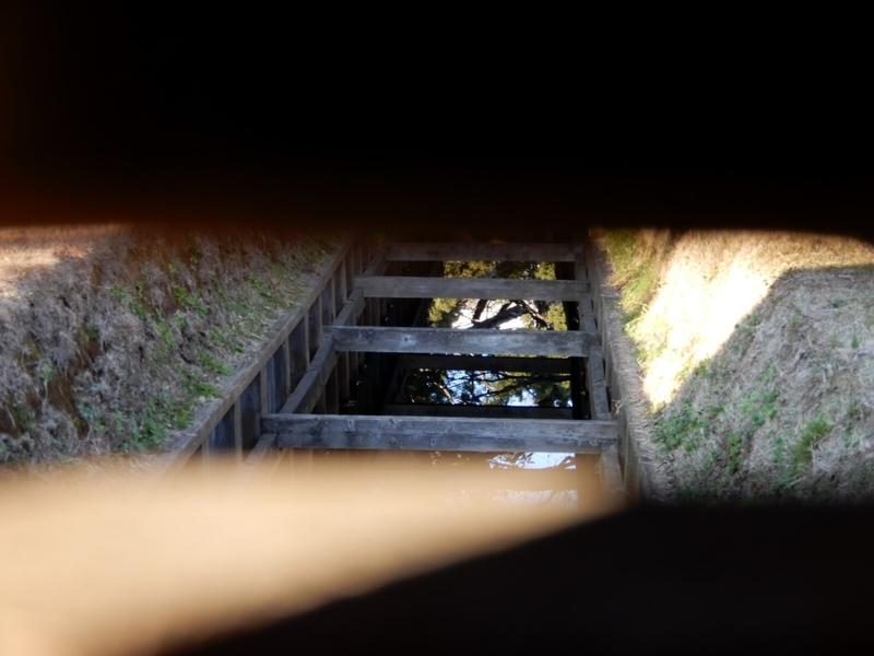 2020/01/03/鴨場の小覗き2