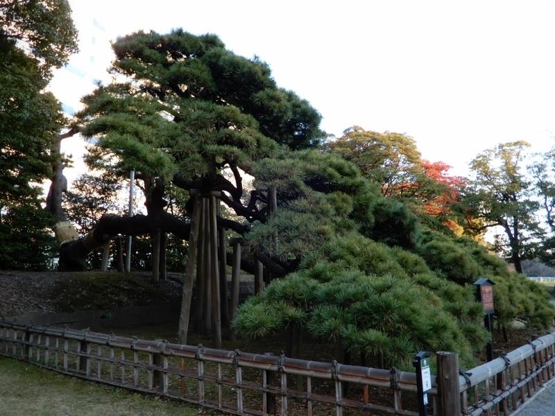 f:id:Nakano_Hitsuji:20200103160636j:plain