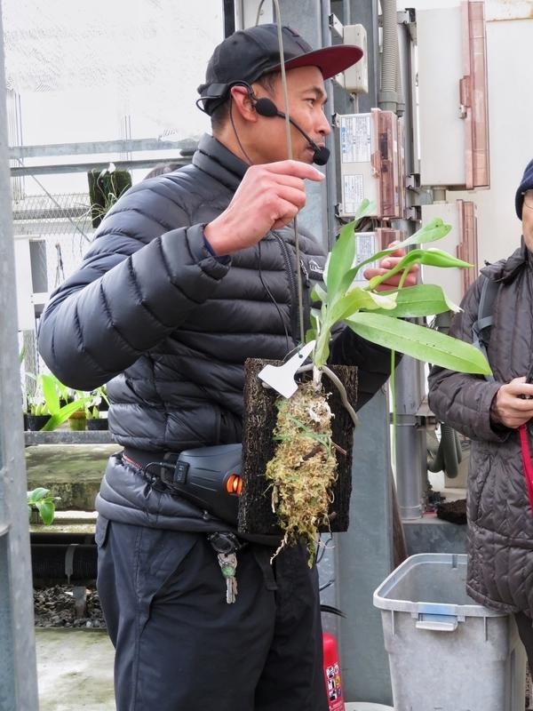f:id:Nakano_Hitsuji:20200122134849j:plain