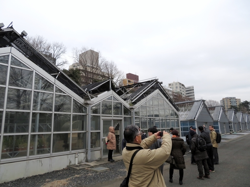 f:id:Nakano_Hitsuji:20200122143457j:plain