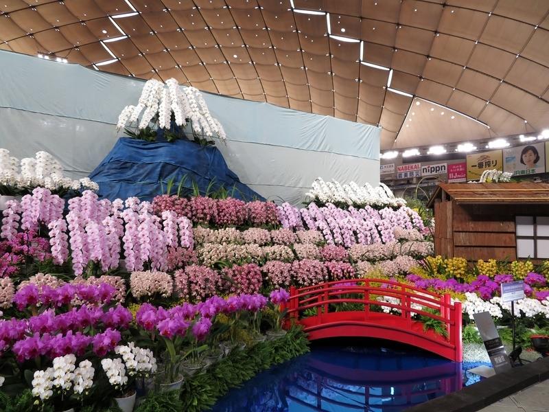 日本洋蘭生産協会東日本支部「陽春の忍野」