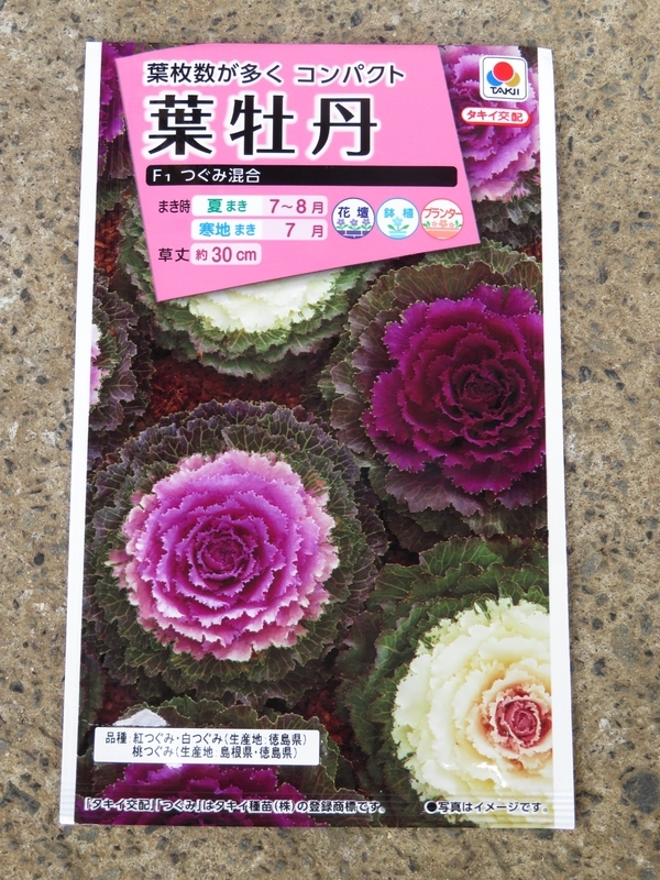 f:id:Nakano_Hitsuji:20200809133058j:plain