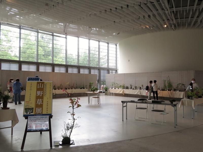 2020/09/26/大多摩山野草会 山野草展