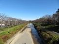 2020/11/10/南浅川
