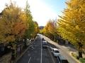 2020/11/10/町田街道交差点2