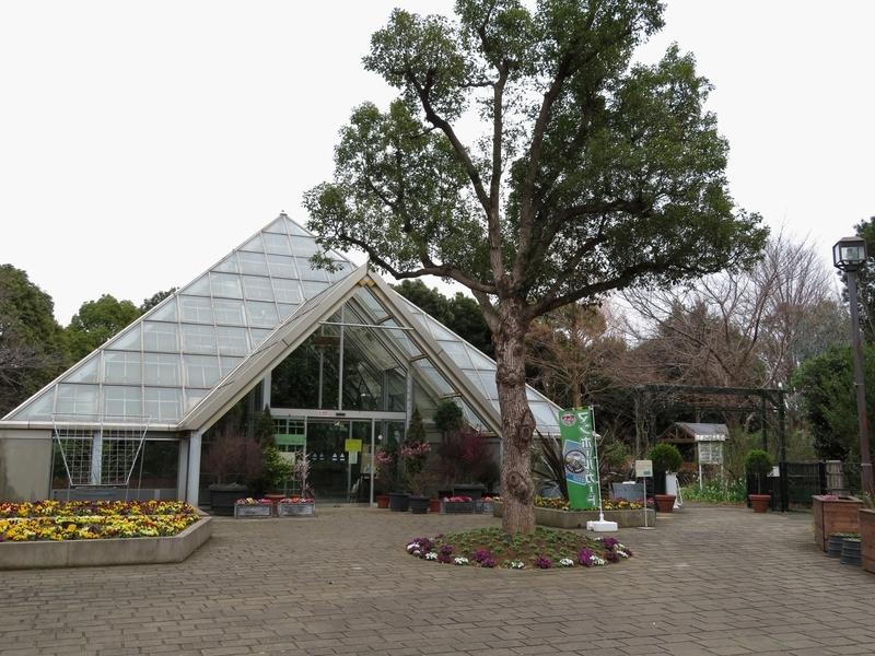 f:id:Nakano_Hitsuji:20210226151215j:plain