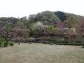 2021/04/09/庭園