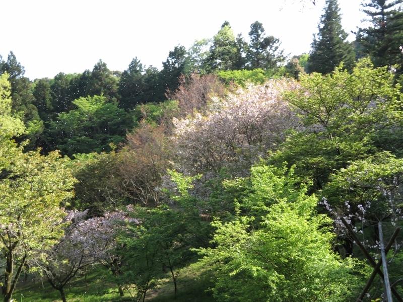 f:id:Nakano_Hitsuji:20210412154100j:plain