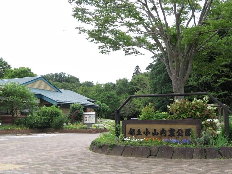 f:id:Nakano_Hitsuji:20210531112559j:plain